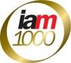 IAM Patent 1000 2018